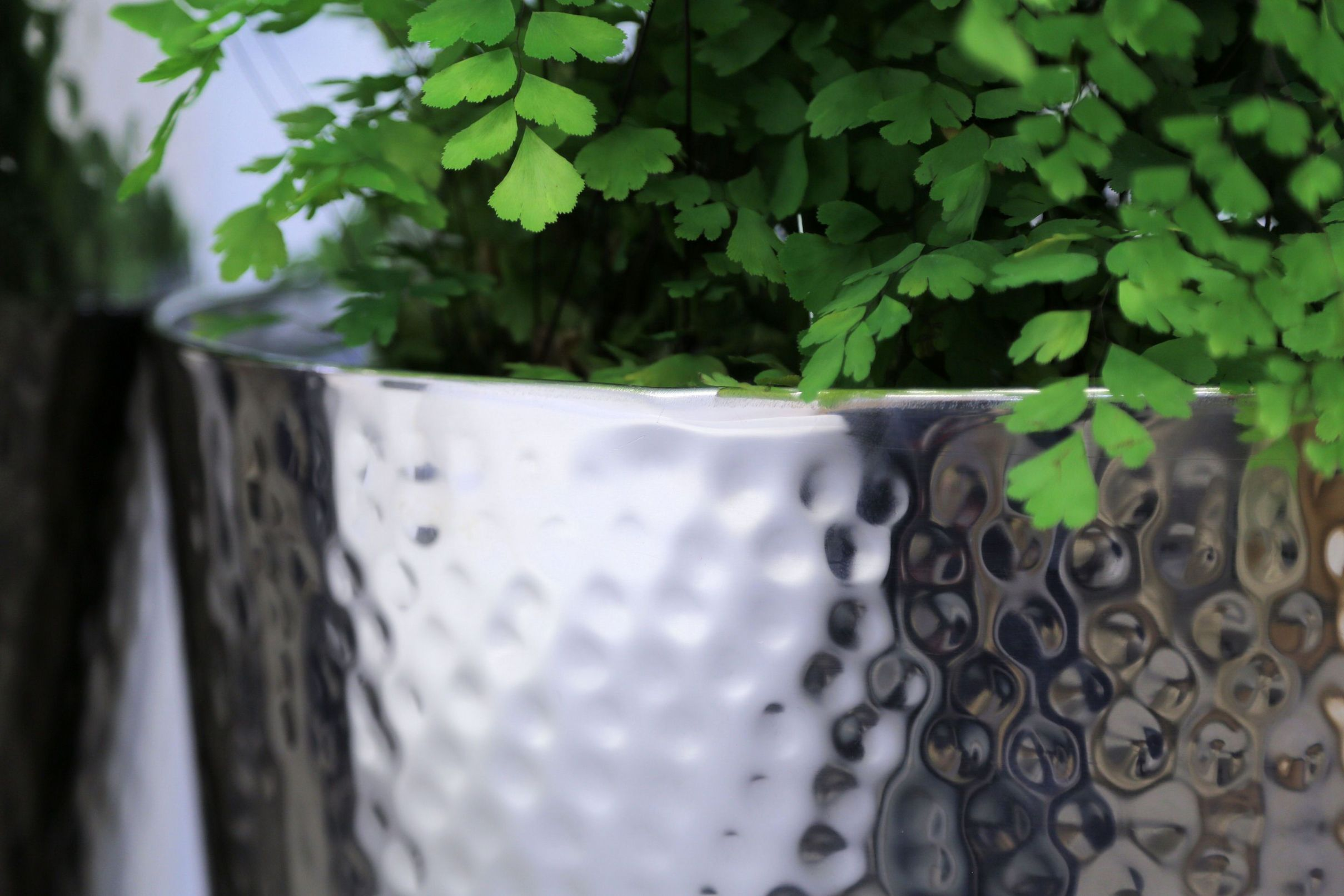 Hammered Stainless Steel Tapered Round Planters From potstore